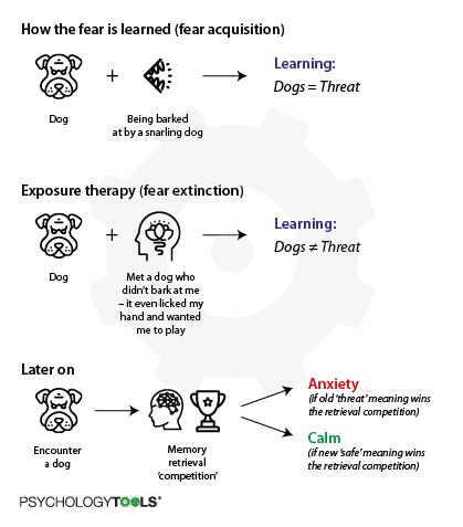 A diagram describing inhibitory learning theory in terms of retrieval competition